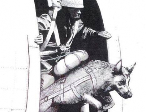 Parachuting dogs of D-Day and the battle for Normandy